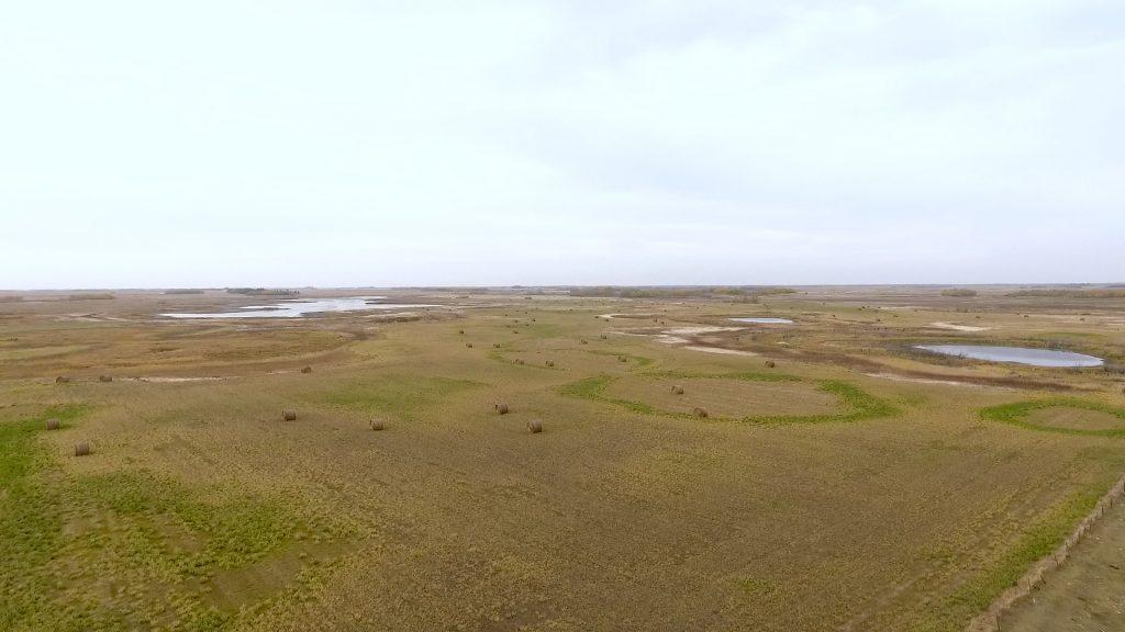 hay/pasture land kelvington