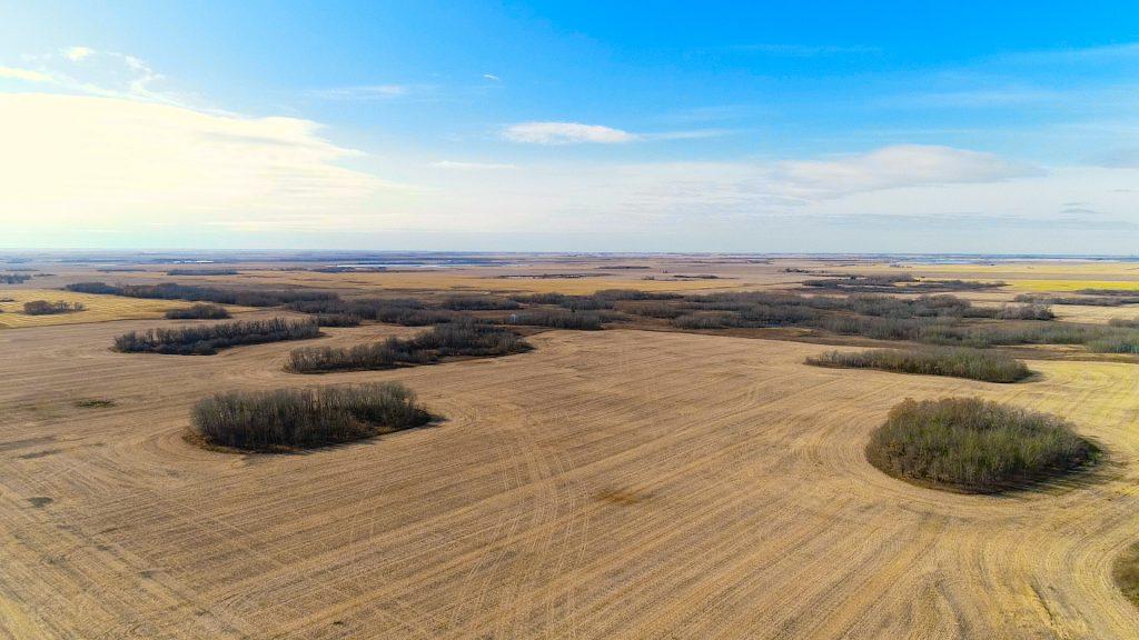 grain pasture land saskatoon