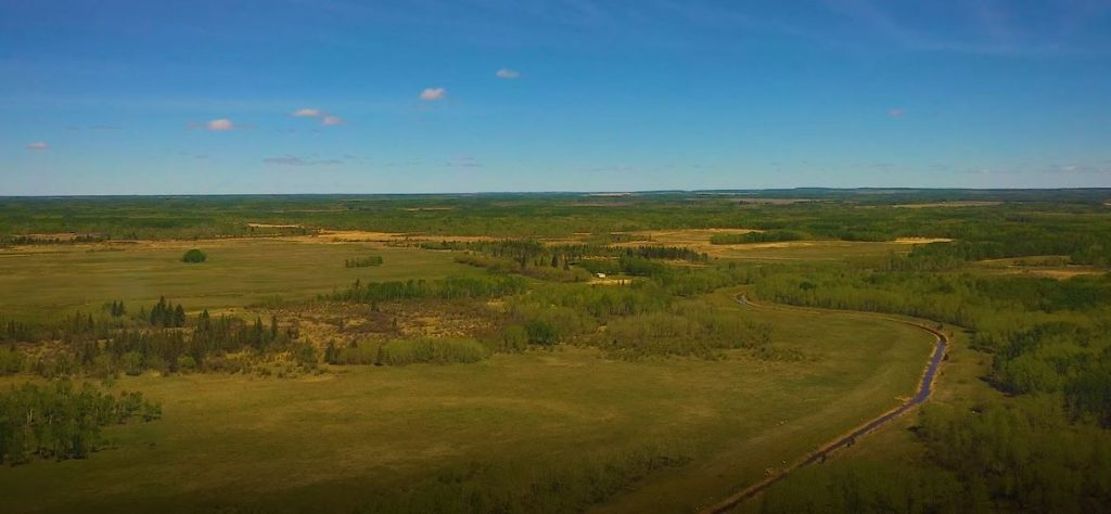 hay/pasture land for sale