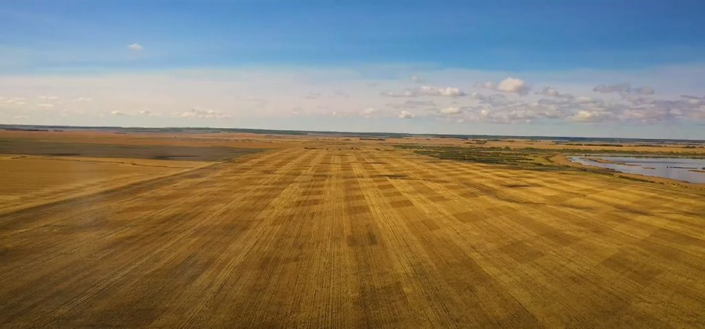 high quality grainland