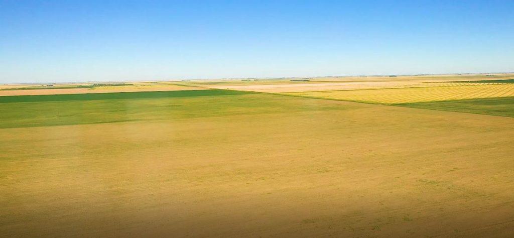 half section grain land